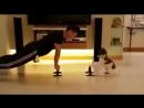 Идеальный партнер по тренировкам