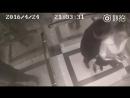 Девушка вырубает насильника, который хотел изнасиловать ее. Прикольное видео, жесть, прикол, юмор игры не порно не секс ню голые