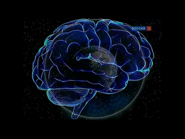 Пирамиды и альфа ритм мозга человека
