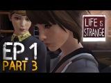 Life is Strange - НАКАЗЫВАЕМ СТЕРВ #3