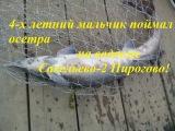 4-х летний мальчик ловит осетра в Савельево-2 Пирогово