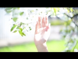 Белый Сад - весна 2016
