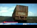 Видео, от которого перехватывает дыхание! Обгон нереально длинного автопоезда по встречной полосе!