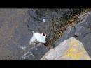Norvegiya rybalka fordy kambala