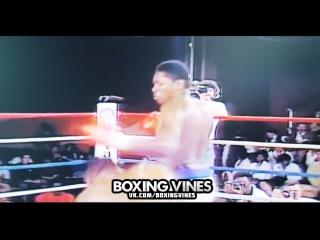 Tyson vs Colay (Boxing Vines) l vk.com/boxingvines