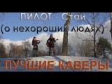 Пилот - Стаи (о нехороших людях) cover by Serebryanochka