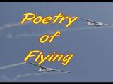 Poetry of Flying - Gliders L-13L-23 Super Blan