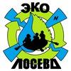 ЭКО-ЛОСЕВО  (экофестиваль)
