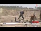 Армия Ирака вошла в осажденный город Эль-Фаллуджа