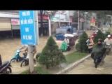 Нячанг 2016, сезон дождей 2