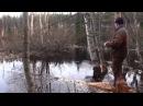 Охота на бобра с луком в Финляндии