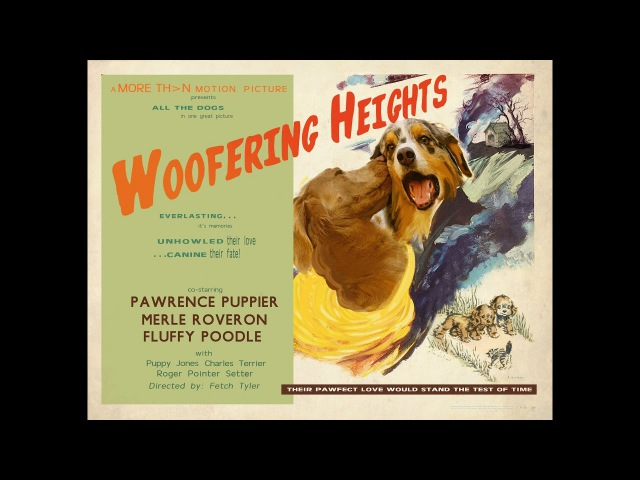 Woofering Heights a film to help relax dogs stressed by fireworks and loud noises