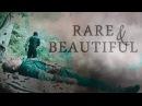 Rare Beautiful Steve Bucky AU