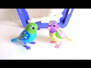 Игрушка птичка в клетке Digi Birds (Дигибердс) - интерактивная