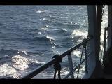 Морская прогулка с Крисом Ри