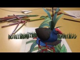 Quiver Augmented Reality