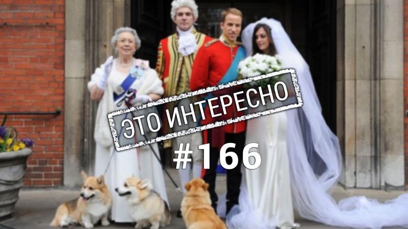 Это интересно: Интересные факты о королевской семье Великобритании