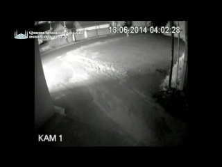 NSWP - Крым 2014