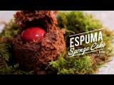 ESPUMA MICRO SPONGE CAKE