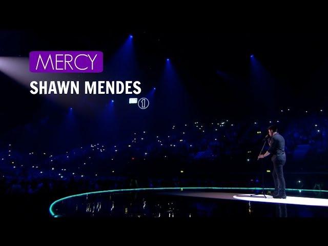 Mercy - Shawn Mendes [TRADUCCIÓN]