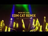 Meow Mix Song   Ashworth Dvj Komanche video Remix