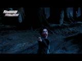 Когда Гарри всех зае...