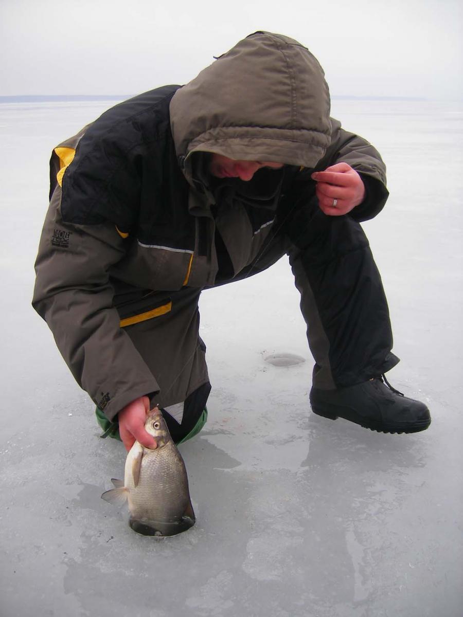 Как настроить снасть для ловли леща со льда