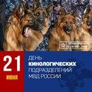 Денис Матвеев фото #38