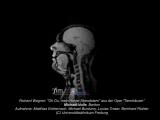 МРТ поющего человека