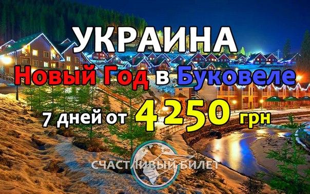 yZCtzV5pKoM.jpg