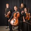 Струнный квартет Schatz/ String quartet Schatz