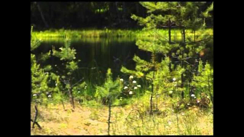 Parki krajobrazowe Warmii i Mazur