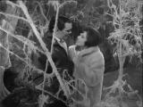 Лариса Мондрус и Муслим Магомаев - Разговор птиц - 1966