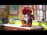 Тайная жизнь домашних животных Тизер 1