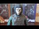 Обзор фигурок Neca Planet of The Apes Series 1: Gorilla Soldier, Dr. Zaius, Cornelius.