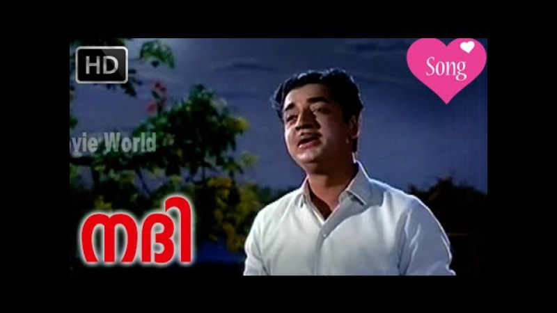 Aayiram Padasarangal Kilungi Song Nadhi Malayalam Classic Movie 1969 HD