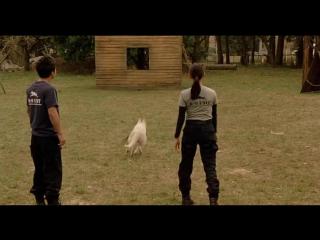 Х/Ф Полицейский пёс: Отряд К-9 (2011г)