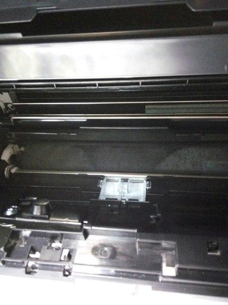 Девушка сканирует на принтере свою писку видео фото 230-476