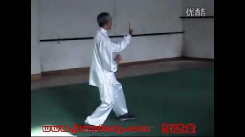 Song Guanghua (宋光华), Song Shi Xingyi Quan (宋氏形意)