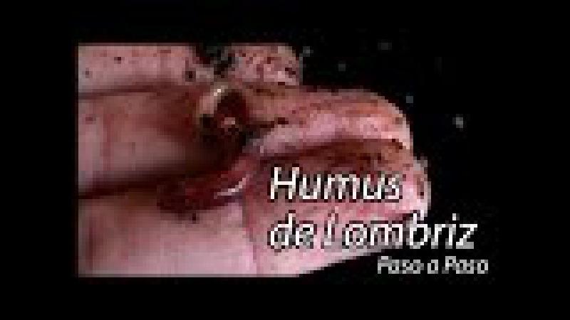 Humus de Lombriz Paso a Paso con los desperdicios de tu cocina
