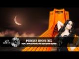 PERSIAN MIX IRANI 2017 DANCE PARTY ELECTRO HOUSE REMIX CLUB SHAD NEW IRANIANمیکس ایرانی گلچین جدید
