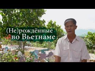 (Не)рождённые во Вьетнаме