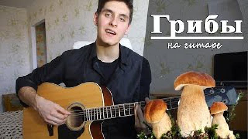 ГРИБЫ - ТАЕТ ЛЕД (Последний Кавер Под Гитару)