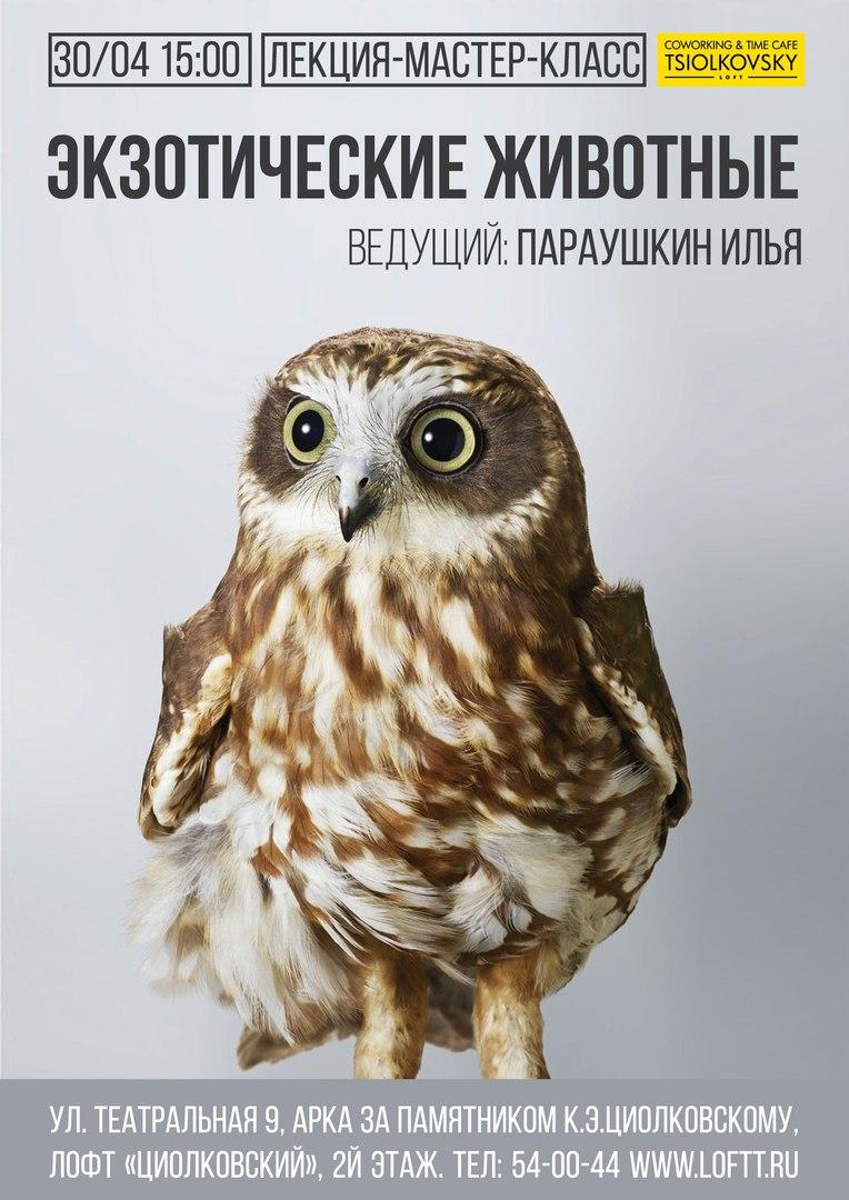 Афиша Калуга 30/04 Встреча с экзотическими животными