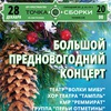 28.12 - Большой Предновогодний Концерт в ТС