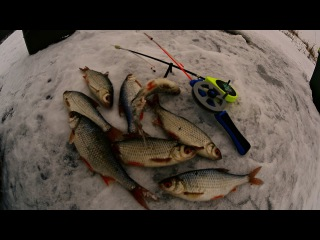 Ловля плотвы и окуня зимой на реке | Зимняя рыбалка | Клев рыбы
