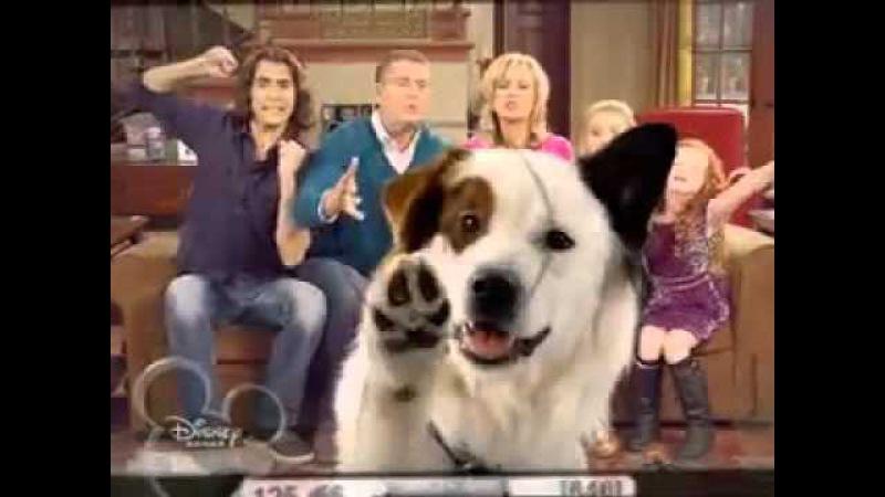Собака точка ком 1 сезон, 5 серия