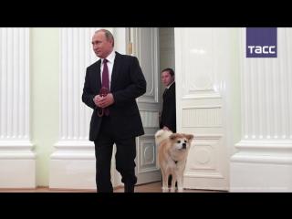 Путин показал японским журналистам свою