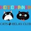 Котокафе 🐈 Котоклуб «Kotomania» Cats Relax Club