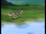 СЕРГЕЙ ИЗБАШ Одинокий бродяга волк